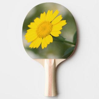 Raquete Para Ping-pong Cravo-de-defunto de milho