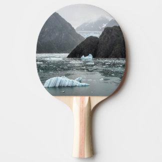 Raquete Para Ping Pong Gelo na pá do fiorde do braço de Tracy