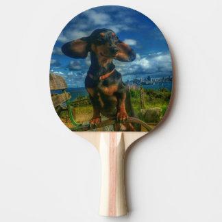 Raquete Para Ping Pong Ilha do anjo