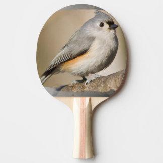 Raquete Para Ping-pong pá do pong do sibilo