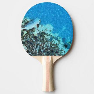 Raquete Para Ping Pong Peixes que movem-se sobre o recife