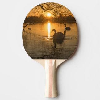 Raquete Para Ping-pong Por do sol com cisne