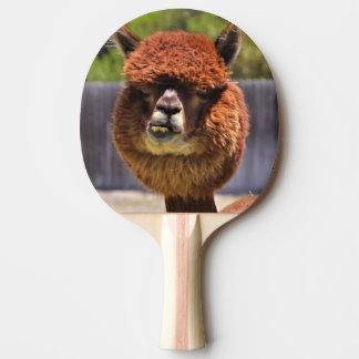 Raquete Para Tênis De Mesa Pá engraçada de Pong do sibilo da alpaca