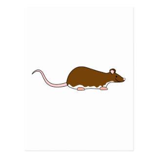 Rato do animal de estimação de Brown. Berkshire, Cartão Postal