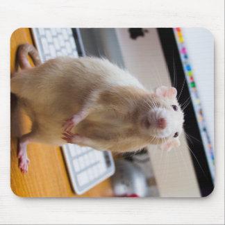Rato Mousepad de Marty - rato do computador