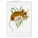 Ratos bonitos, natureza animal da aguarela do rato cartão