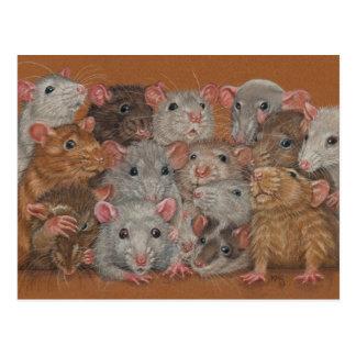 Ratos do grupo do grupo do cartão da reunião III