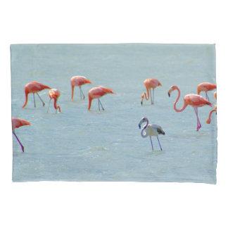 Rebanho cinzento e cor-de-rosa dos flamingos no