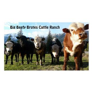 Rebanho de gado na fazenda do país cartoes de visitas