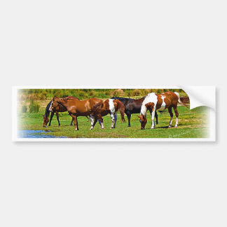 Rebanho dos cavalos adesivo