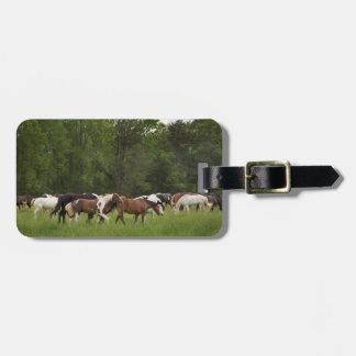Rebanho dos cavalos, Tennessee Etiqueta De Bagagem