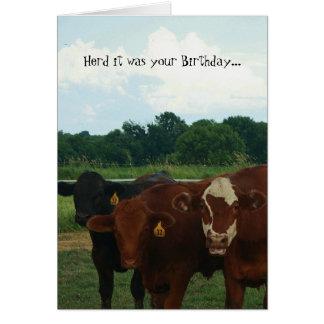 Rebanho era seu cartão da vaca do aniversário