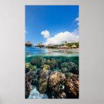 Recife de corais e um recurso tropical impressão