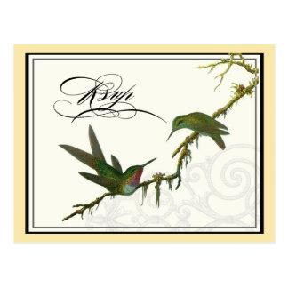 Redemoinhos dos colibris n - cartão RSVP do