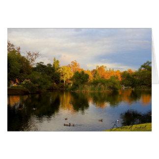 Reflexão bonita do outono em um cartão