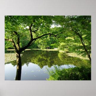 Reflexões de Kyoto Japão Posteres