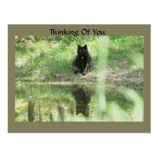 Reflexões do gato preto que pensam de você cartão