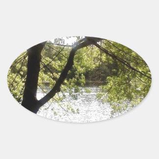 Reflexões nas madeiras adesivo oval