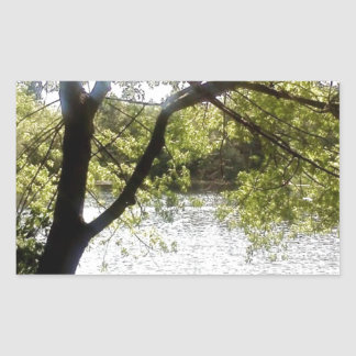 Reflexões nas madeiras adesivo retangular