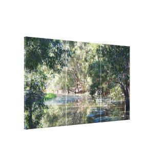 Reflexões no impressão das canvas da lagoa