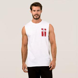 Regata A bandeira de Dinamarca, dinamarquês colore a