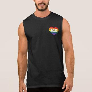Regata Coração do arco-íris do orgulho gay de Missouri -