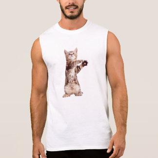 Regata Gato ereto - gatinho - animal de estimação -