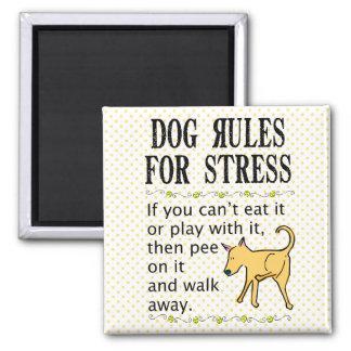 Regras do cão para o esforço ímã quadrado
