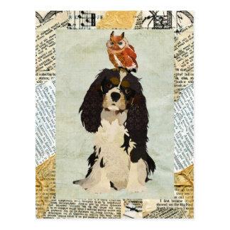 Rei Cavalier & cartão da coruja Cartão Postal