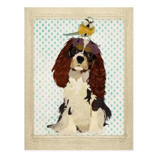 Rei Cavalier & cartão pequeno do pássaro Cartões Postais