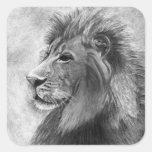Rei da selva, leão tirado mão na grafite adesivos quadrados