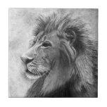 Rei da selva, leão tirado mão na grafite azulejos de cerâmica
