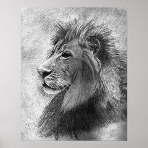 Rei da selva, leão tirado mão na grafite poster