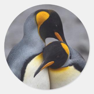 Rei pinguins na etiqueta do amor