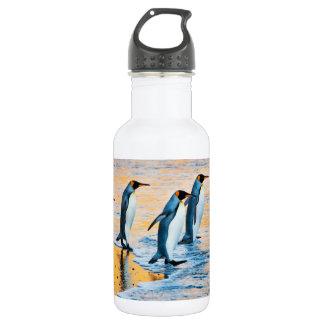 Rei pinguins no nascer do sol - garrafa de água