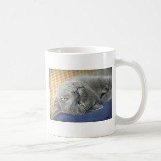 Relaxe! Caneca de café de ronrom cinzenta do gato