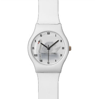 Relógio branco da cisne May28th