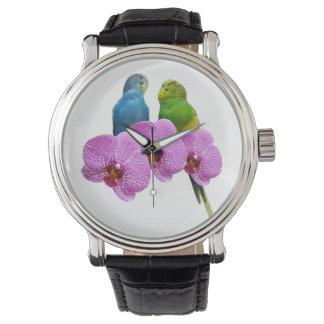 Relógio Budgie com orquídea roxa