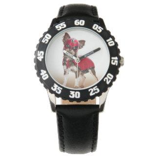 Relógio Cão do libre de Lucha, chihuahua engraçada,