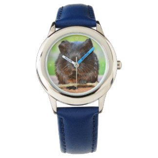 Relógio Cobaia personalizada bonita da cutia do ouro