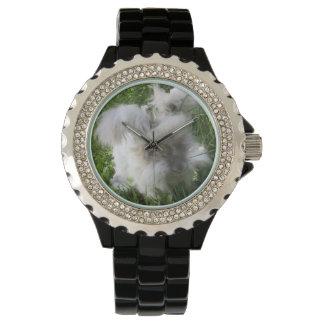 """Relógio Coelho inglês do angora de """"Bradley"""""""