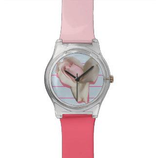 Relógio com fundo do rosa e do azul do rosa
