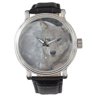 Relógio de lua do lobo