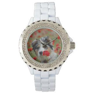 Relógio De Pulso Australian shepherd puppy