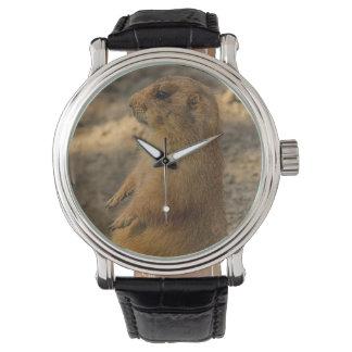 Relógio De Pulso Cão de pradaria