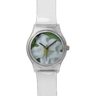 Relógio De Pulso Flor tropical branca encontrada em Fiji