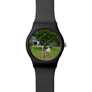 Relógio De Pulso Fox Terrier que joga no jardim,