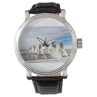 Relógio De Pulso Groynes na costa de mar Báltico