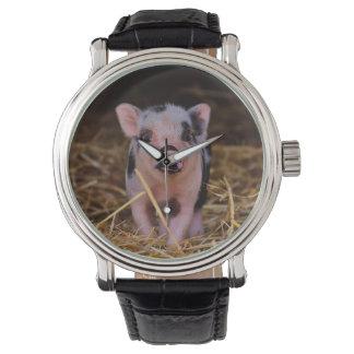 Relógio De Pulso mini porco