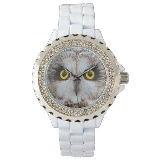 Relógio De Pulso olhos Curto-orelhudos da coruja